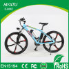 26 Inch Mountain Epac E Bike Magnesium Wheels