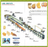 Hot Sale Soft and Hard Biscuit Production Line