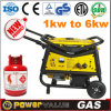Soncap Approved 4kw Gas Power Generator (ZH5500NGCT)