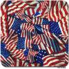 Tscy1245 American Nation Flag Design Water Transfer Printing Film