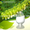 Hawthorn Extract Oxymatrine (CAS: 16837-52-8)