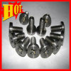 DIN965 Gr 5 Titanium Bolt Titanium Screw in Stock