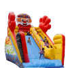 Palm Commercial Inflatable Bounce Slide, Water Slider