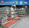 a Type Cage for Layers & Broilers Breeding Cage