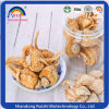 Chinese Herbal Maca Root for Healthy Care