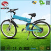 Front and Rear Suspension Electric Mountain Bike with LCD Display