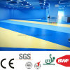 High Quality Soft Anti-Bacteria 3mm PVC Floor for Gym Solid Color