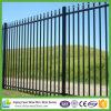 Ornamental Black Powder Coated Galvanized Steel Wrought Iron Fence