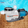 High Temperature Resistant Kpa Pumps for Swimming Pool & SPA (KPA)