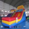Coco Water Design Inflatable Color Slide LG9048