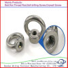 High Quality Carbon Steel Zinc Eye Nut/Bolt Made in China