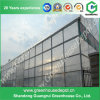 Large Economical Glass Greenhouse with Ventilation System for Sale
