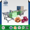 Fresh and Dry Onion Peeling and Root Cutting Machine/ Onion Processing Machine