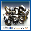 Heavy Radial Load Cylindrical Roller Bearing with Full Sizes