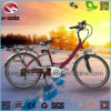 Alloy Frame 250W Good Quality Electric City Road Bicycle