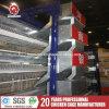 Farm Machinery H Type New Quail Farming Equipment Product