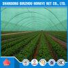 Green HDPE Greenhouse Sun Shade Net
