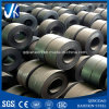 Q195 Carbon Steel Coil (T0.4-2.0mm * W1000-1250mm)