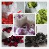Silk Favor Petals