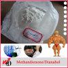 CAS 72-63-9 USP Bodybuilding Steroid Powder Dianabol/Dbol