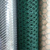 1/2 PVC Coated Chicken Wire Netting