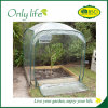 Onlylife Economical Breathable Green Mini Greenhouse