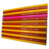 Hb Plastic Pencil Without Eraser (BR-602)