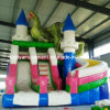 Hot Sale Inflatable Slide for Children Park