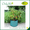 Onlylife PP Breathable Preventing Drowned Grow Bag