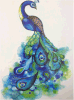 Colorful Blue Peacock Tail Feather Temporary Tattoo Sticker Art Tattoo