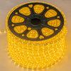 Hot Selling AC110V Or 220V 8W/M SMD5050 LED Strip Light