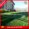 Artificial Golf Putting Green Carpet