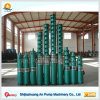 Solar or Electricl Motor High Pressure Irrigation Deep Well Water Pump