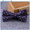 Factory Manufacturer Funky Bow Tie Custom Design for Man