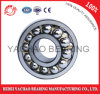 Self-Aligning Ball Bearing (2318 ATN AKTN)