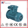 Yb3 Series Electric Three Phase Explosion Proof Motor