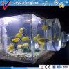 2016 Water Filter Aquarium for Jellyfish Tank