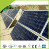 Good Quality and Competitive Price of The 295W Solar Panel for Solar System
