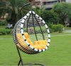 Factory Outdoor Swing, Rattan Furniture, Indoor Egg Hanging Chair (D017A)