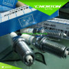 22401AA670 Spark Plug Catalogue for Ngk Silfr6a