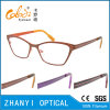 Fashion Style Full-Frame Titanium Optical Glasses Frame Eyeglass Eyewear (9601-EW)