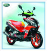 150cc/125cc/50cc, Motor Scooter, Gas Scooter, Scooter, New Motorcycle (DBONE)