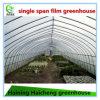 Hot DIP Galvanized Steel Durable Film Green House for Fruit