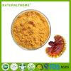 UV Test 20% Polysaccharide Ganoderma Lingzhi Extract