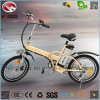 En15194 Folding Electric Bike with Lithium Battery