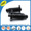 Customized 8.8 Grade Metal Black Oxide Hex Bolt