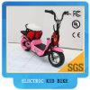 Kids Electric Bike 250W