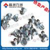 Anti Skid Tungsten Carbide Stud for Tyre