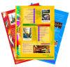 Printing Catalog / Book / Magazine / Poster