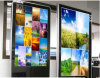 32inch Wall Mounted LCD Display